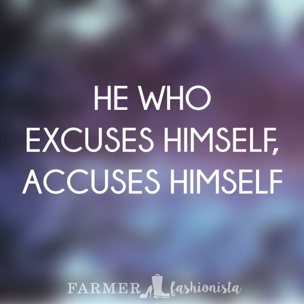 Excuses Quote 17