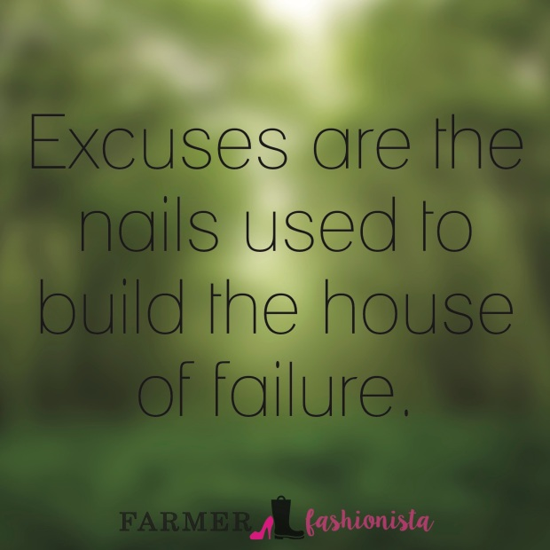 Excuses Quote 2